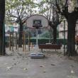 campi da basket, toc toc firenze