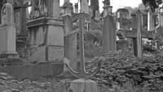 Il Cimitero degli Inglesi, Toc toc firenze, alessio giuntini