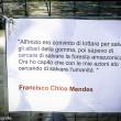 Parco, Toc Toc Firenze