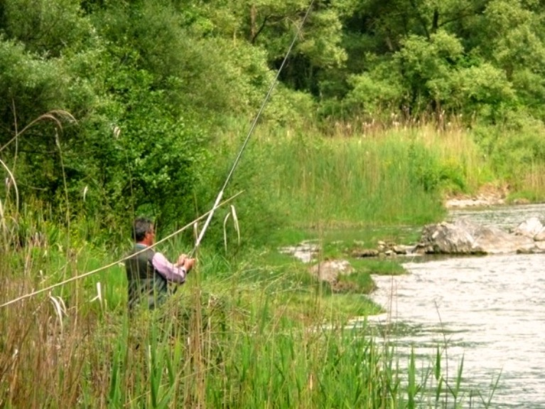 pesca sull'Arno, toc toc